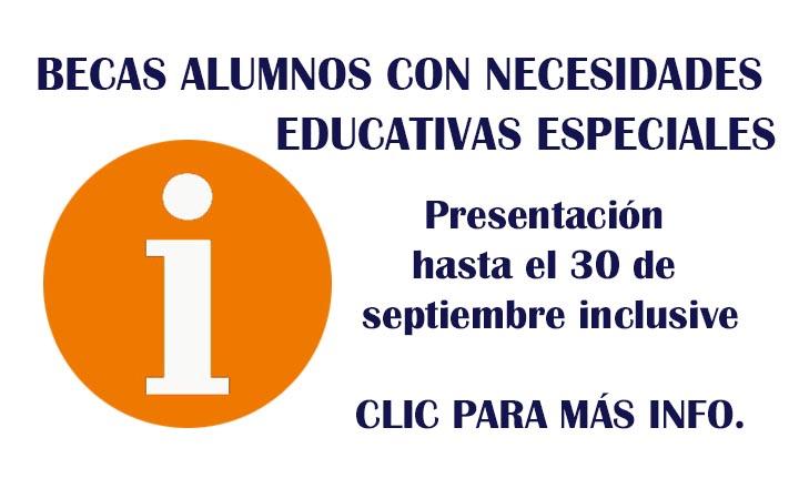 AYUDAS BECAS ALUMNOS CON NECESIDADES EDUCATIVAS ESPECIALES