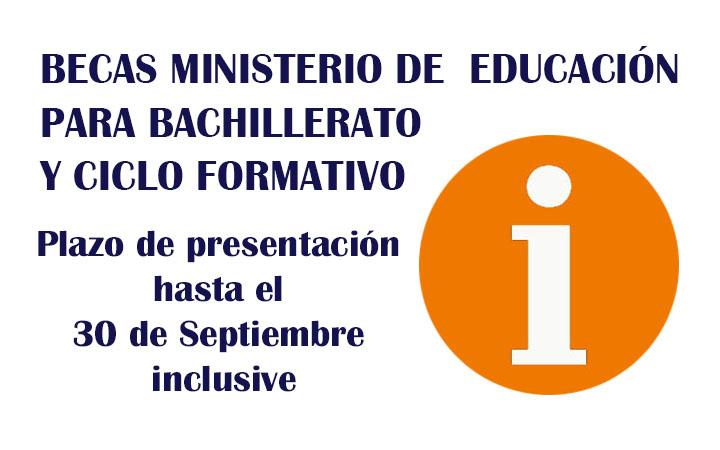 CONVOCATORIA BECAS MINISTERIO DE EDUCACIÓN PARA BACHILLERATO Y CICLO FORMATIVO